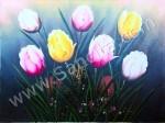 BG-31 Lukisan Bunga Tulip