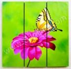 P3-33 Lukisan Minimalis Set Kupu-kupu
