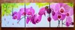 P3-48 Lukisan Minimalis Set Bunga Anggrek
